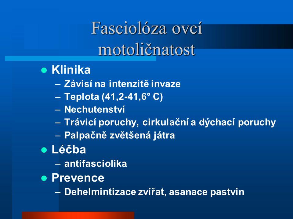 Fasciolóza ovcí motoličnatost  Klinika –Závisí na intenzitě invaze –Teplota (41,2-41,6° C) –Nechutenství –Trávicí poruchy, cirkulační a dýchací poruc