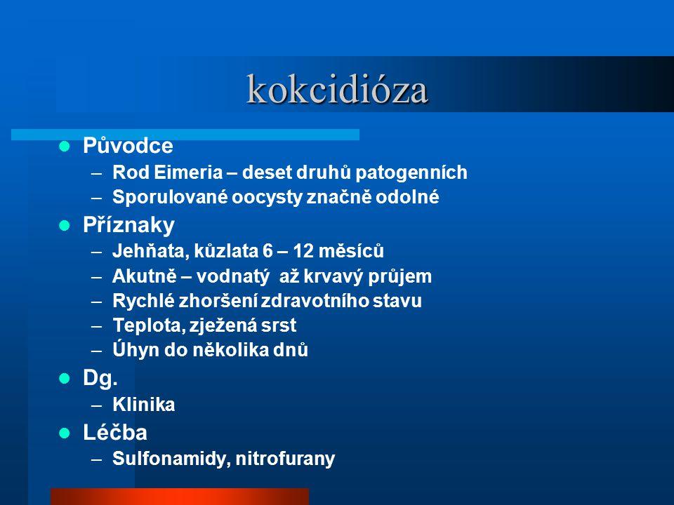 kokcidióza  Původce –Rod Eimeria – deset druhů patogenních –Sporulované oocysty značně odolné  Příznaky –Jehňata, kůzlata 6 – 12 měsíců –Akutně – vodnatý až krvavý průjem –Rychlé zhoršení zdravotního stavu –Teplota, zježená srst –Úhyn do několika dnů  Dg.