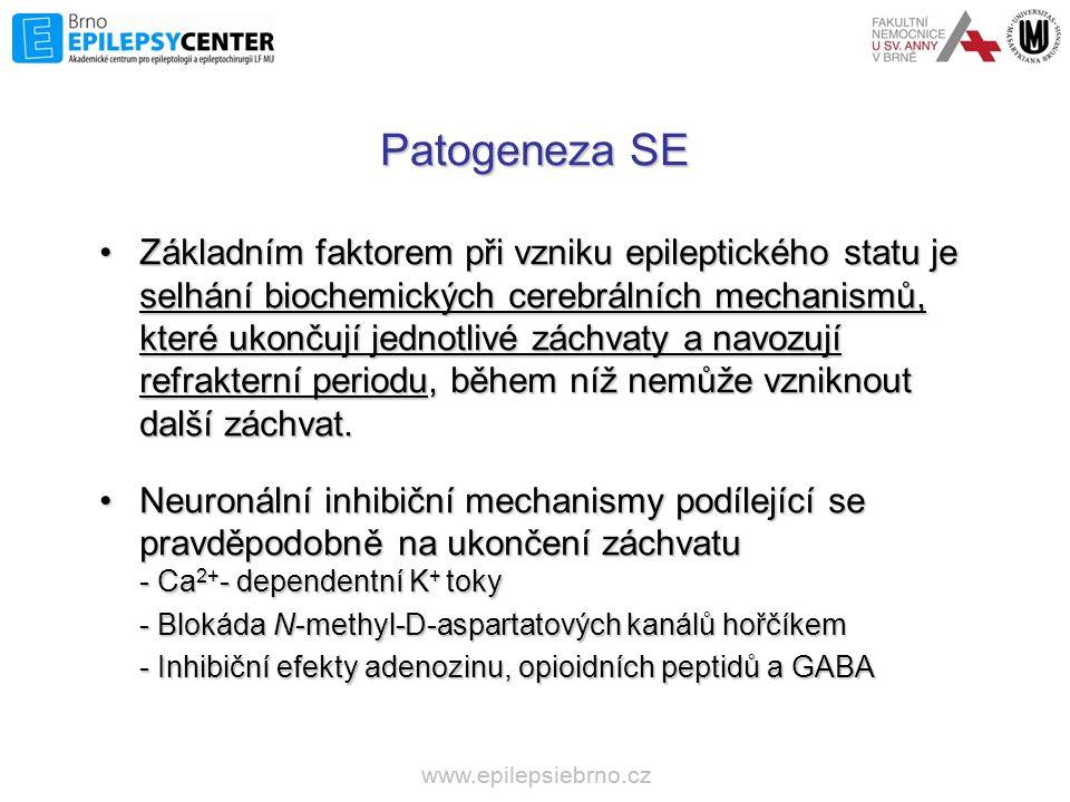Patogeneza SE •Základním faktorem při vzniku epileptického statu je selhání biochemických cerebrálních mechanismů, které ukončují jednotlivé záchvaty