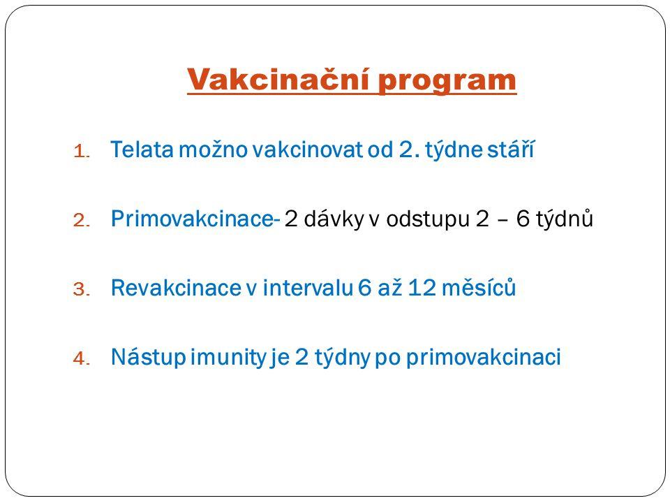 Vakcinační program 1. Telata možno vakcinovat od 2. týdne stáří 2. Primovakcinace- 2 dávky v odstupu 2 – 6 týdnů 3. Revakcinace v intervalu 6 až 12 mě