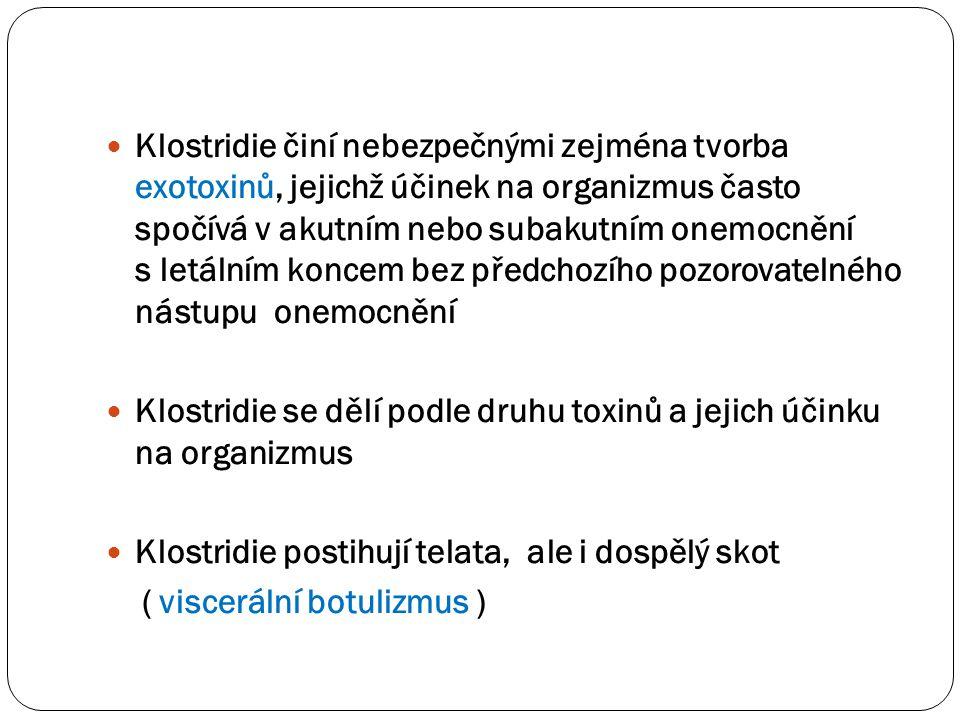  Klostridie činí nebezpečnými zejména tvorba exotoxinů, jejichž účinek na organizmus často spočívá v akutním nebo subakutním onemocnění s letálním ko