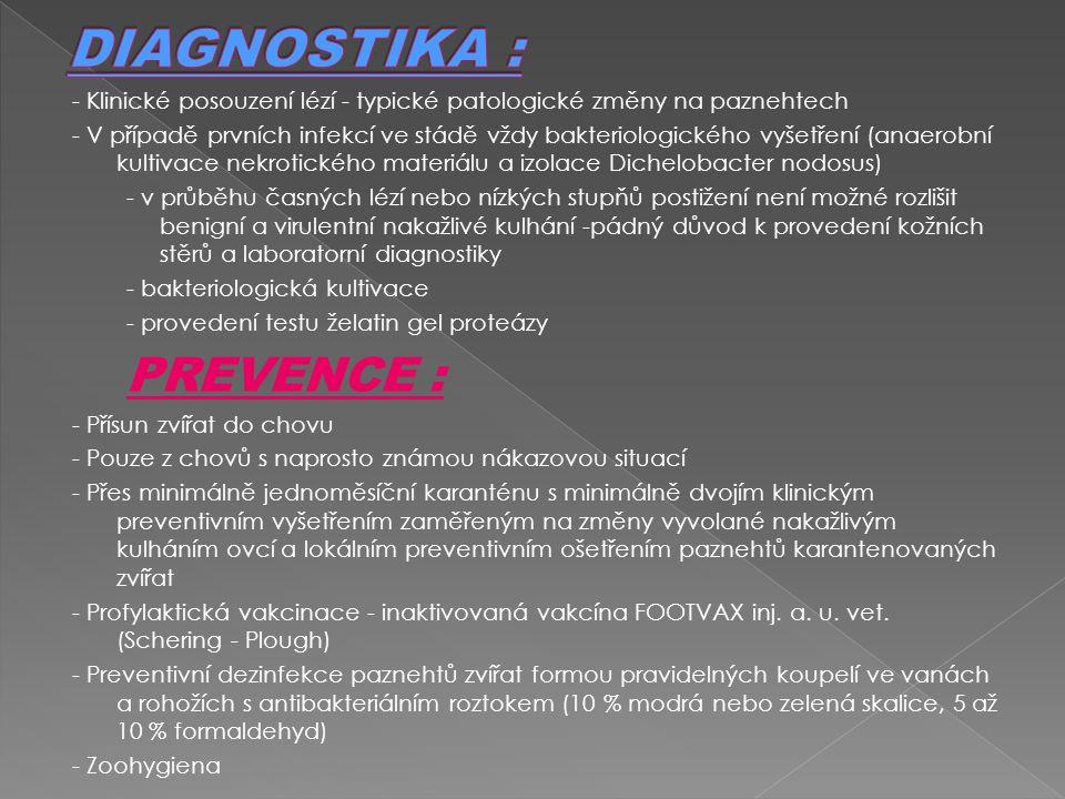 - Klinické posouzení lézí - typické patologické změny na paznehtech - V případě prvních infekcí ve stádě vždy bakteriologického vyšetření (anaerobní k