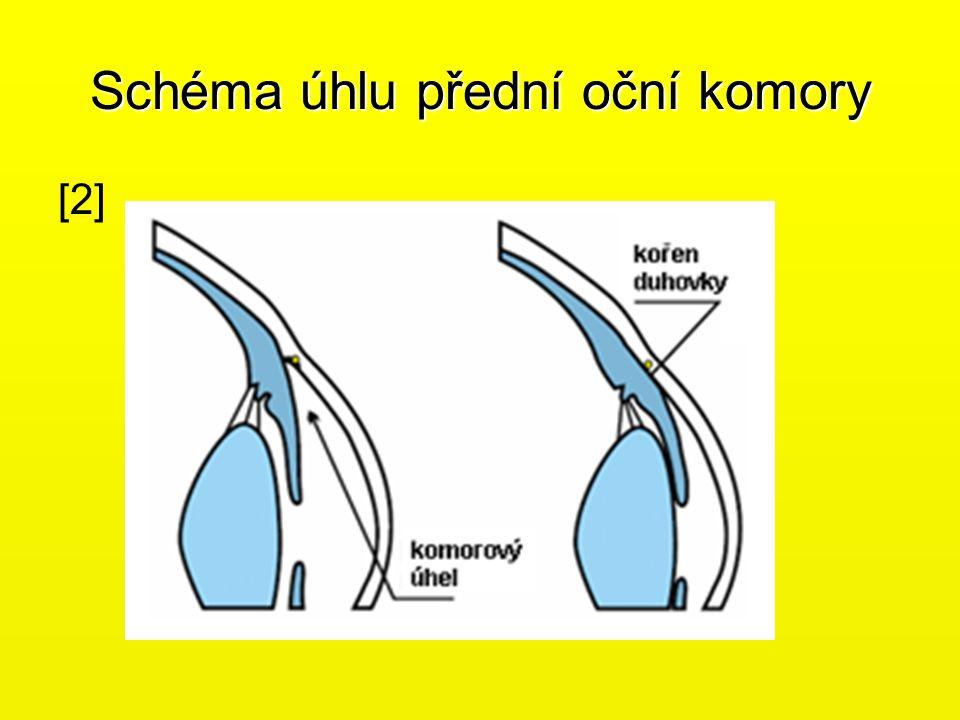 Schéma úhlu přední oční komory [2][2]