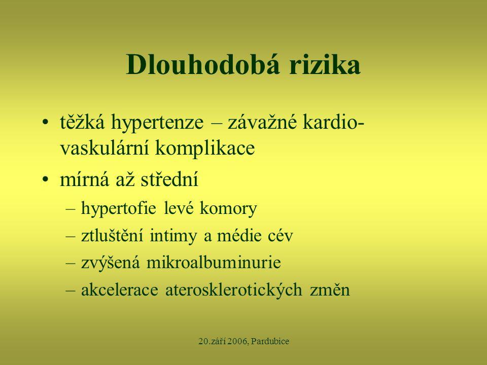 20.září 2006, Pardubice Dlouhodobá rizika •těžká hypertenze – závažné kardio- vaskulární komplikace •mírná až střední –hypertofie levé komory –ztluště