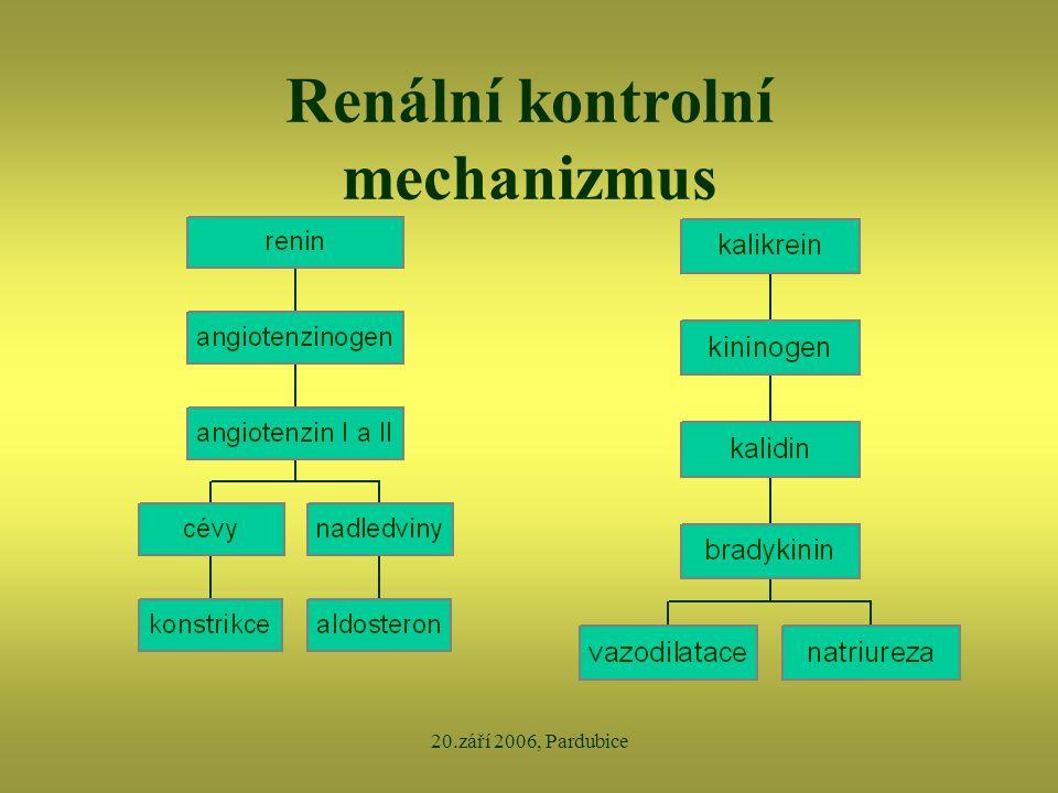 20.září 2006, Pardubice Renální kontrolní mechanizmus