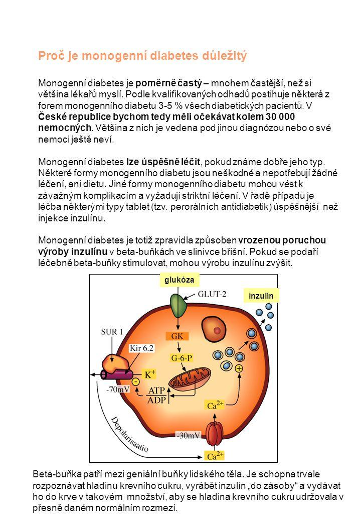 """Léčba """"šitá na míru V současné době známe více než 10 typů monogenního diabetu."""