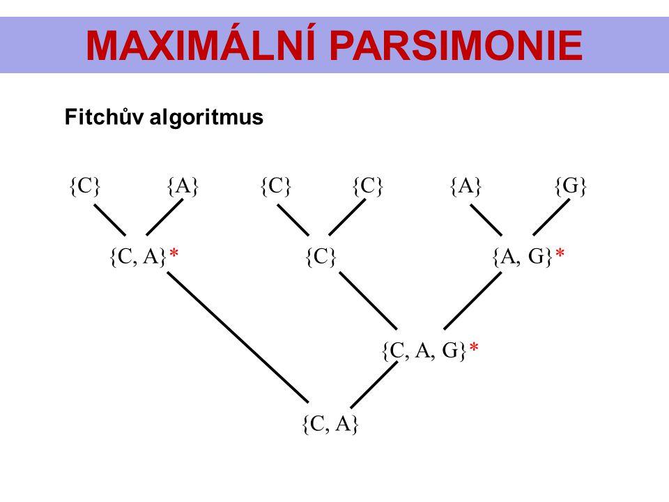 MAXIMÁLNÍ PARSIMONIE {C} {A} {C} {C} {A} {G} {C, A}* {C} {A, G}* {C, A, G}* {C, A} Fitchův algoritmus