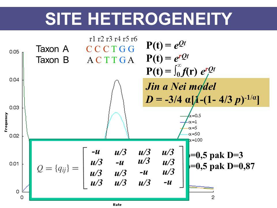 SITE HETEROGENEITY P(t) = e Qt P(t) = e rQt Taxon A C C C T G G Taxon B A C T T G A r1 r2 r3 r4 r5 r6 P(t) = ∫ 0 f(r) e rQt ∞ Jin a Nei model D = -3/4 α[1-(1- 4/3 p) -1/α ] α=0,5 p=0,5 pak D=3 α=10 p=0,5 pak D=0,87 u/3 -u u/3 -u u/3 -u