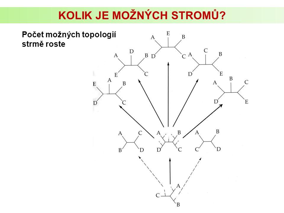 KOLIK JE MOŽNÝCH STROMŮ? Počet možných topologií strmě roste