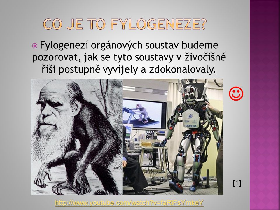  Fylogenezí orgánových soustav budeme pozorovat, jak se tyto soustavy v živočišné říši postupně vyvíjely a zdokonalovaly. [1]  http://www.youtube.co