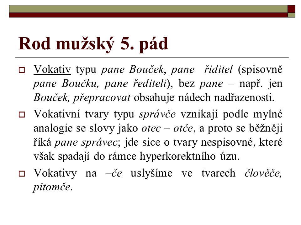 Rod mužský 5. pád  Vokativ typu pane Bouček, pane řiditel (spisovně pane Boučku, pane řediteli), bez pane – např. jen Bouček, přepracovat obsahuje ná