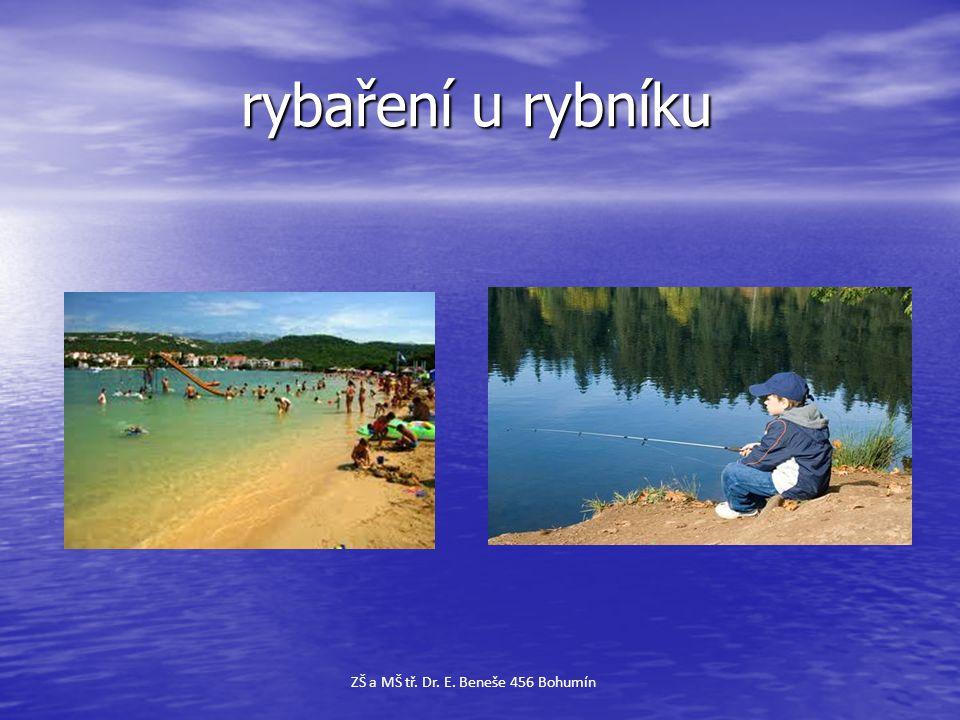rybaření u rybníku rybaření u rybníku ZŠ a MŠ tř. Dr. E. Beneše 456 Bohumín
