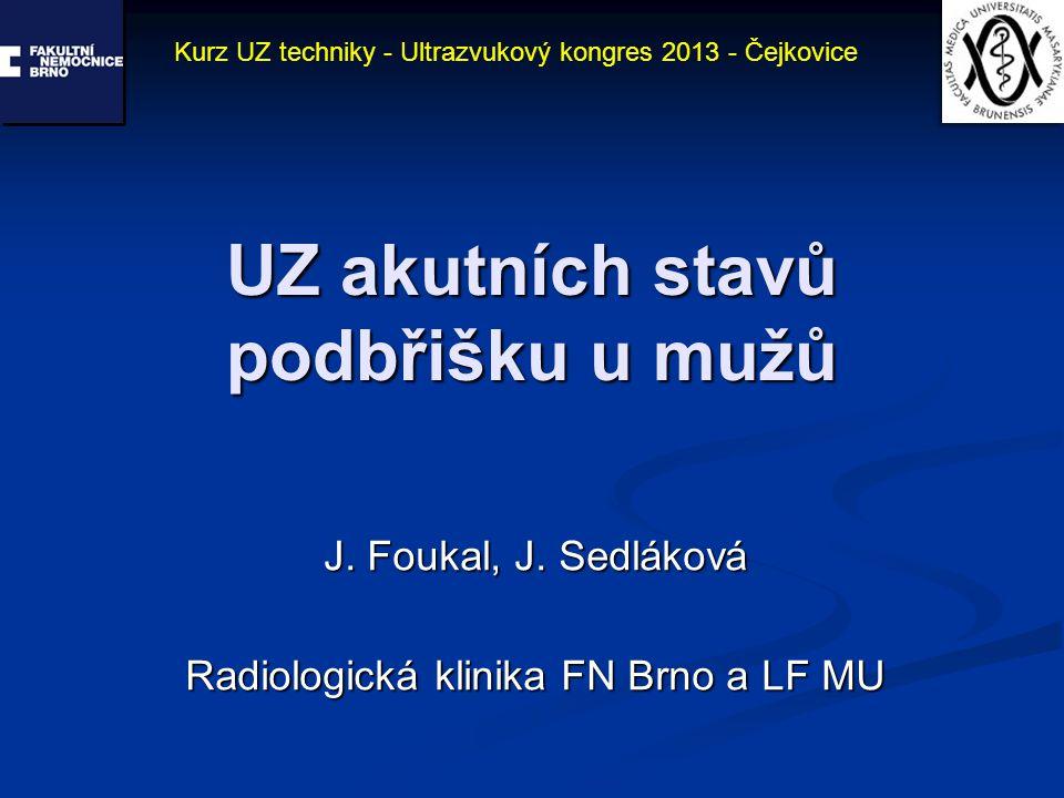 UZ akutních stavů podbřišku u mužů J. Foukal, J. Sedláková Radiologická klinika FN Brno a LF MU Kurz UZ techniky - Ultrazvukový kongres 2013 - Čejkovi