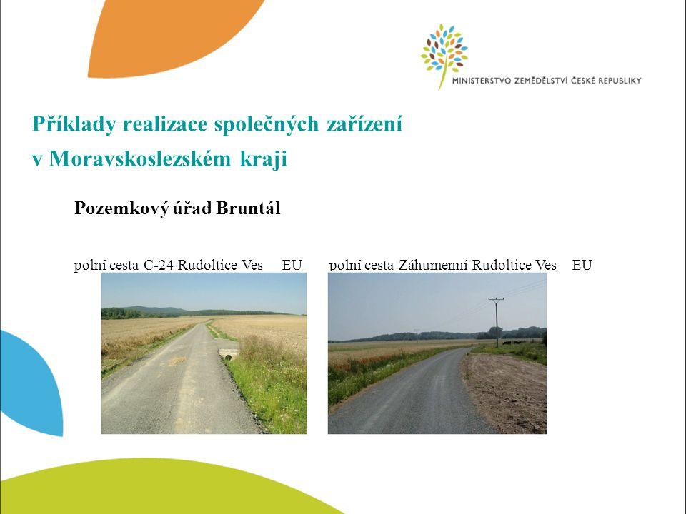 Realizace krajinotvorných a ekologických opatření Ochranné zalesnění, k.