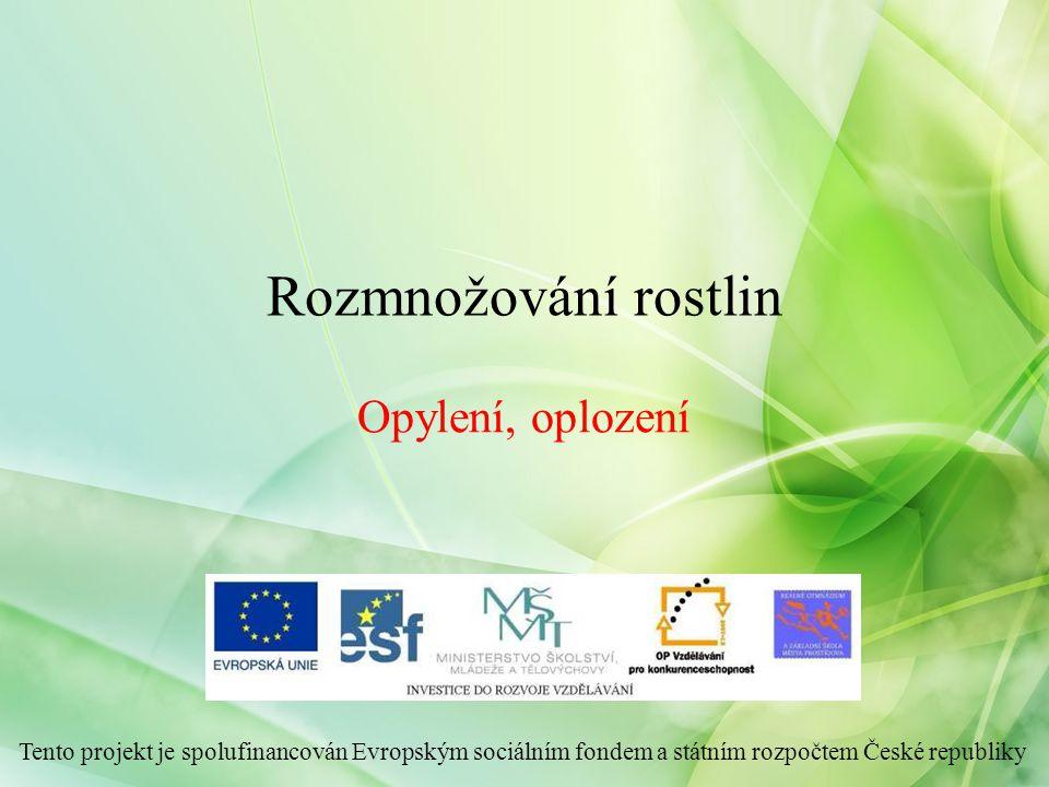 Opylení, oplození Rozmnožování rostlin Tento projekt je spolufinancován Evropským sociálním fondem a státním rozpočtem České republiky