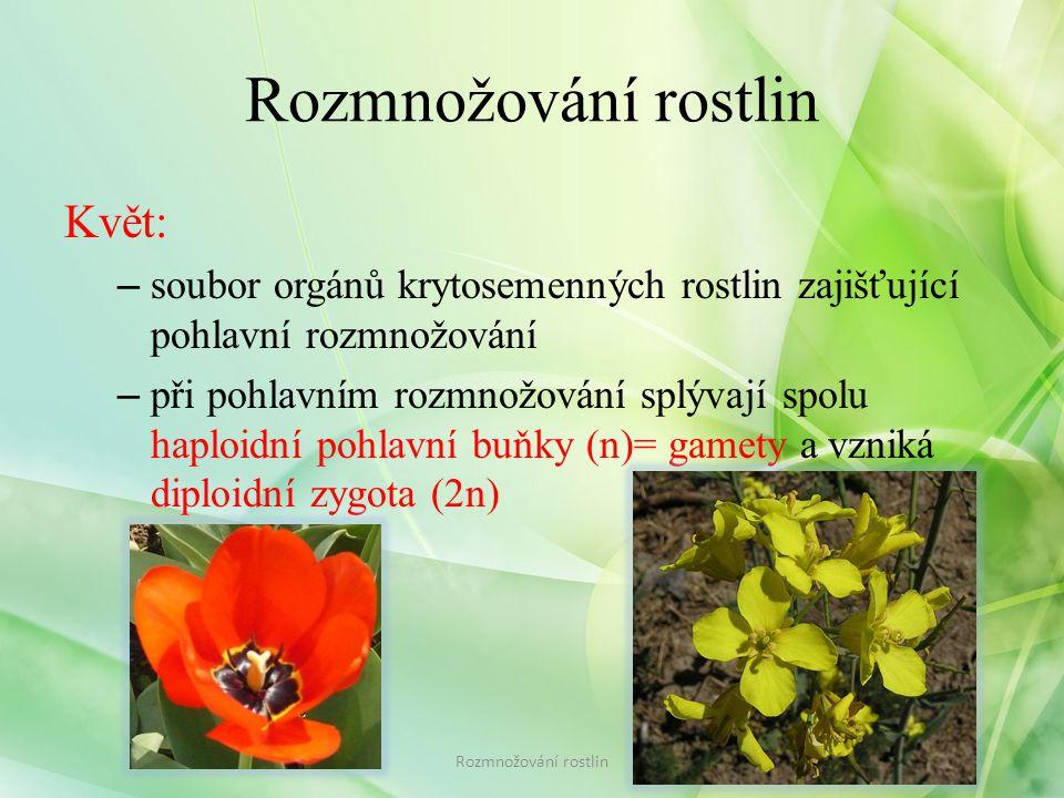 Rozmnožování rostlin Květ: – soubor orgánů krytosemenných rostlin zajišťující pohlavní rozmnožování – při pohlavním rozmnožování splývají spolu haploidní pohlavní buňky (n)= gamety a vzniká diploidní zygota (2n) Rozmnožování rostlin