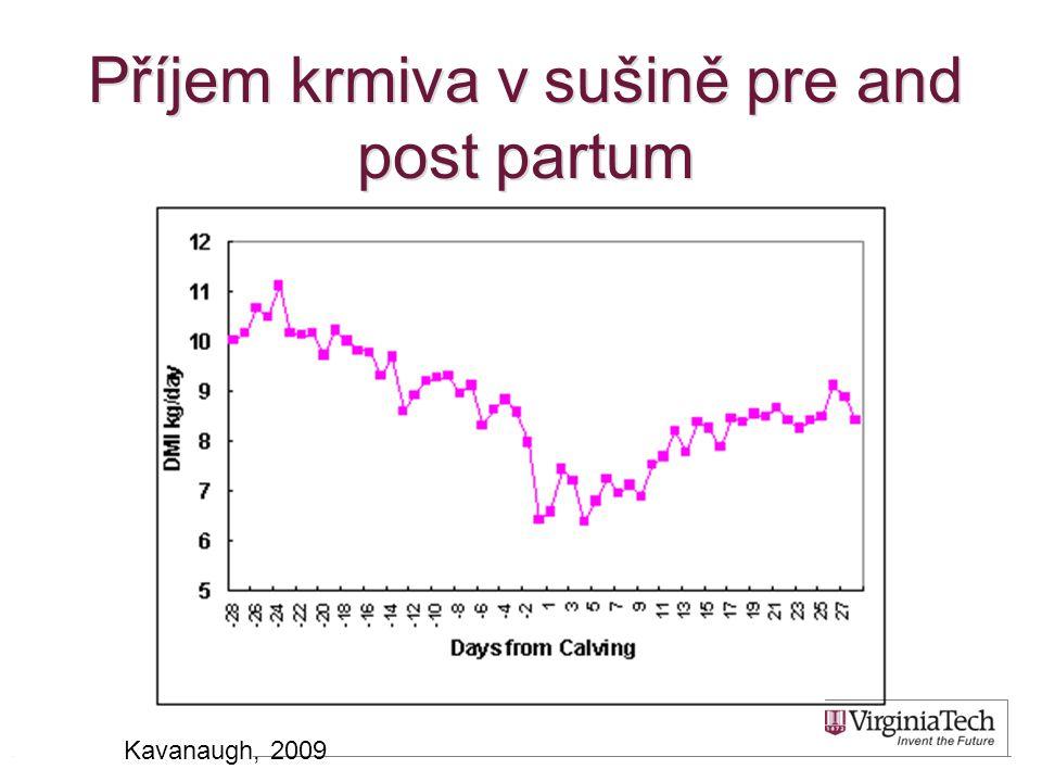 Příjem krmiva v sušině pre and post partum 10 Kavanaugh, 2009