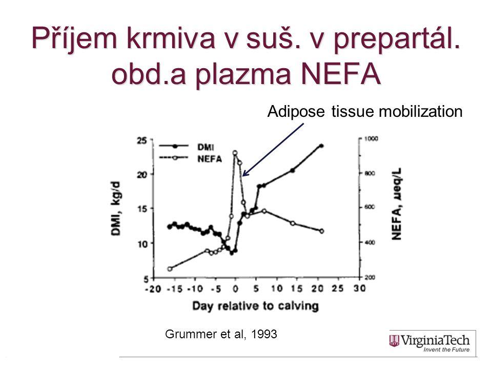 Příjem krmiva v suš. v prepartál. obd.a plazma NEFA 11 Grummer et al, 1993 Adipose tissue mobilization