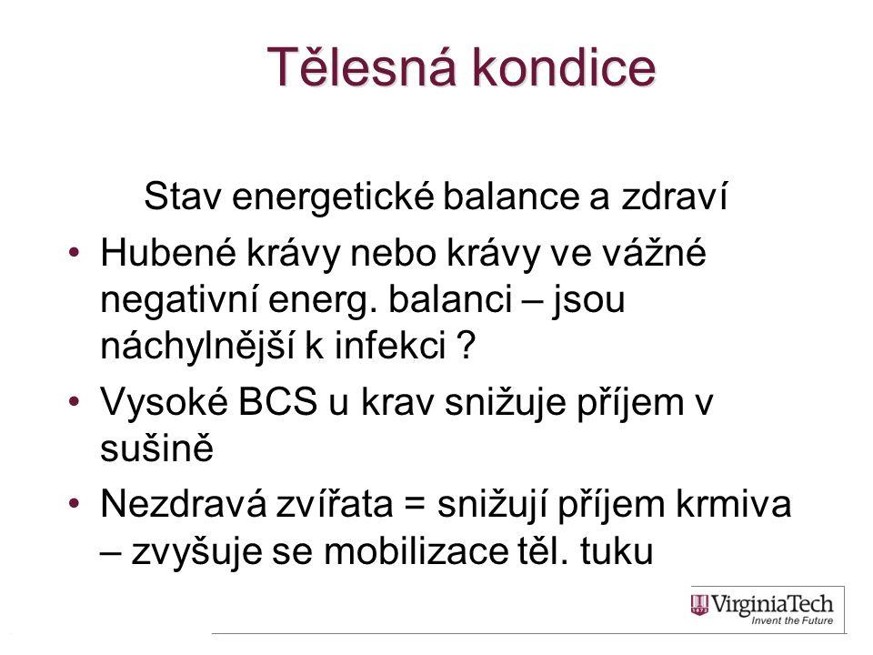 Tělesná kondice Stav energetické balance a zdraví •Hubené krávy nebo krávy ve vážné negativní energ. balanci – jsou náchylnější k infekci ? •Vysoké BC