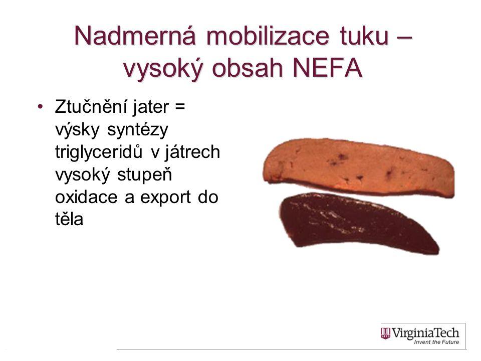Nadmerná mobilizace tuku – vysoký obsah NEFA •Ztučnění jater = výsky syntézy triglyceridů v játrech vysoký stupeň oxidace a export do těla 16