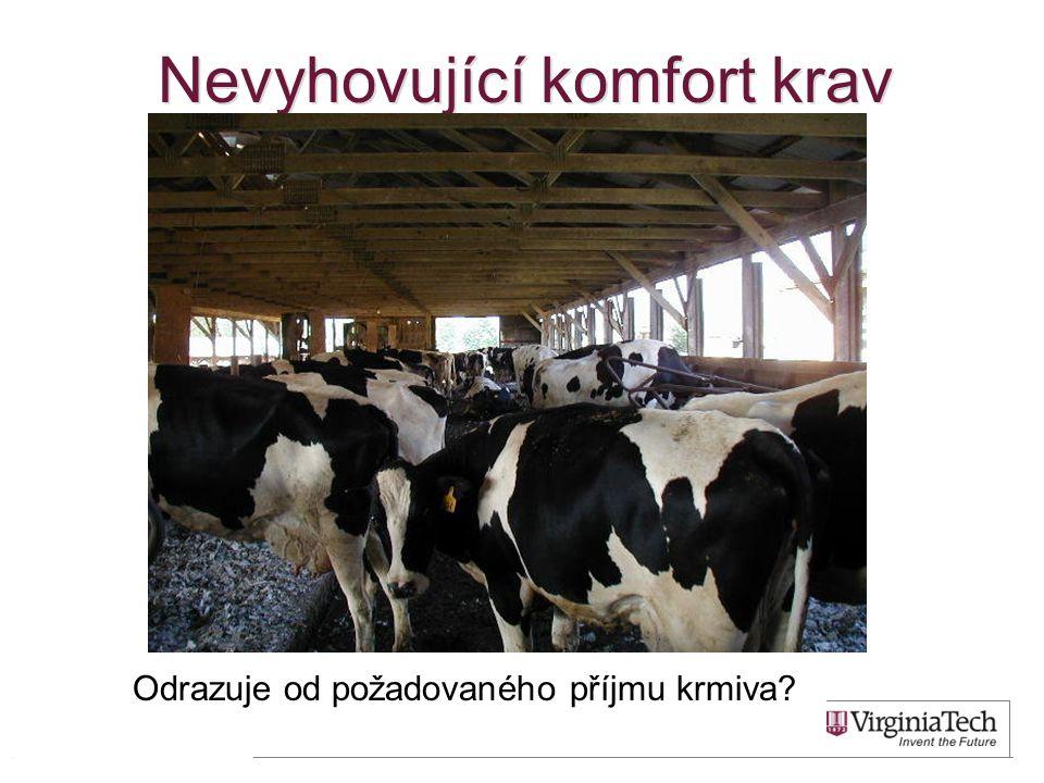 Nevyhovující komfort krav 23 Odrazuje od požadovaného příjmu krmiva?