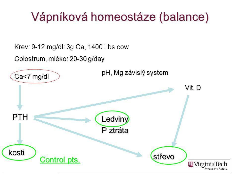 Vápníková homeostáze (balance) Krev: 9-12 mg/dl: 3g Ca, 1400 Lbs cow Colostrum, mléko: 20-30 g/day kosti Ledviny P ztráta střevo PTH Vit. D pH, Mg záv