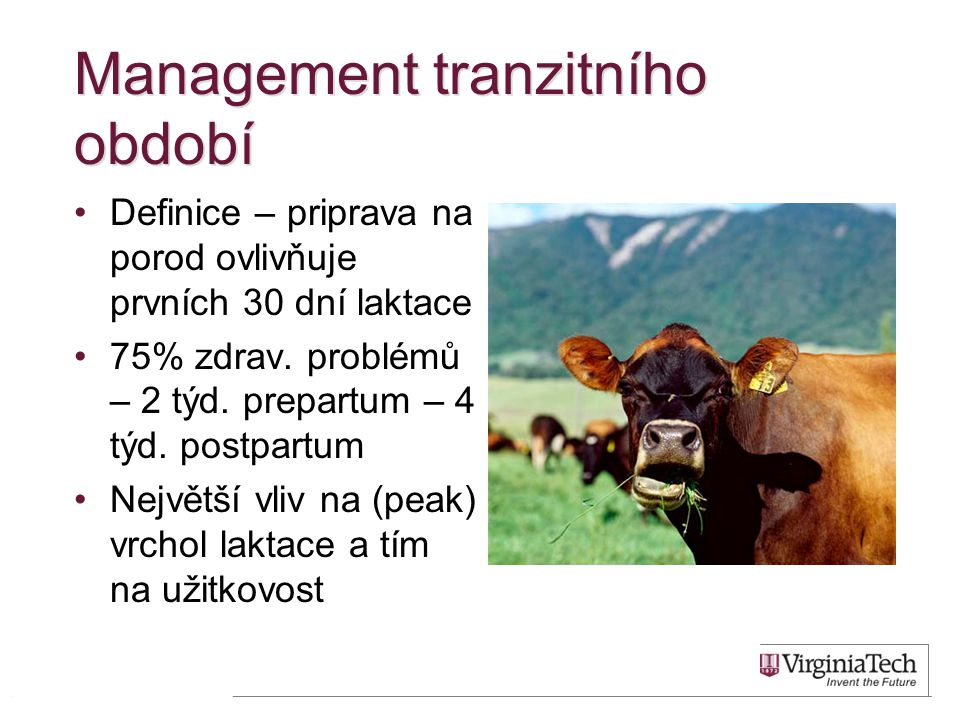 Management tranzitního období •Definice – priprava na porod ovlivňuje prvních 30 dní laktace •75% zdrav. problémů – 2 týd. prepartum – 4 týd. postpart