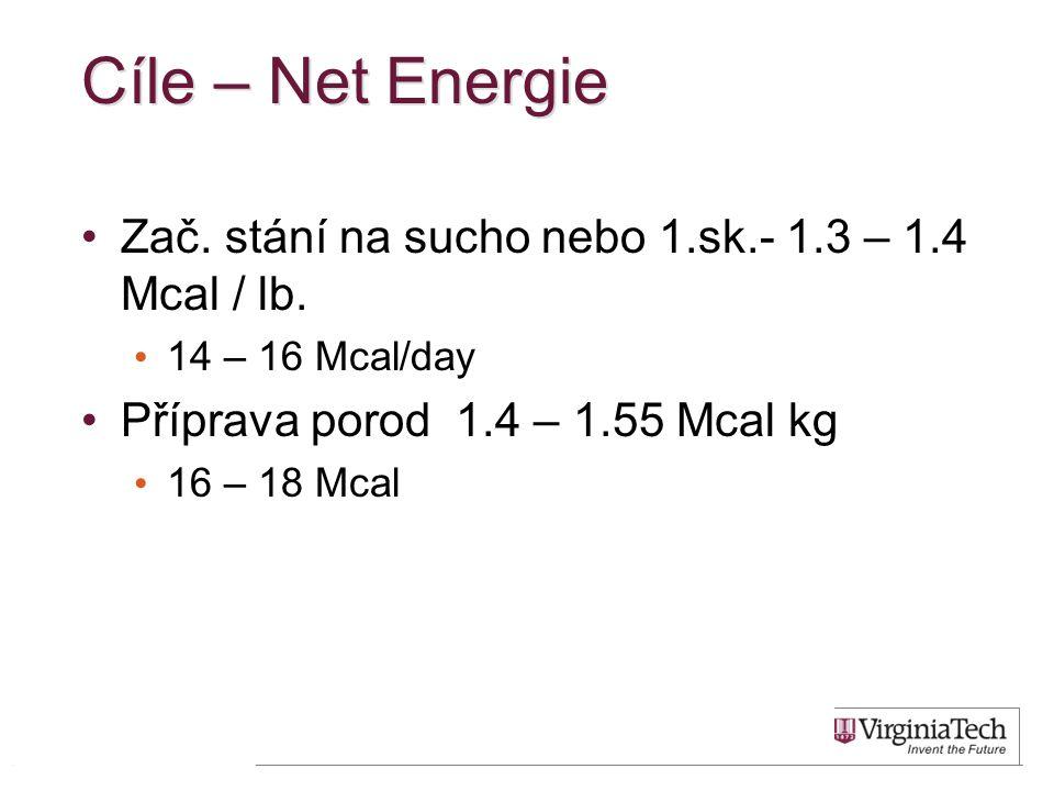 Cíle – Net Energie •Zač. stání na sucho nebo 1.sk.- 1.3 – 1.4 Mcal / lb. • 14 – 16 Mcal/day •Příprava porod 1.4 – 1.55 Mcal kg • 16 – 18 Mcal 42