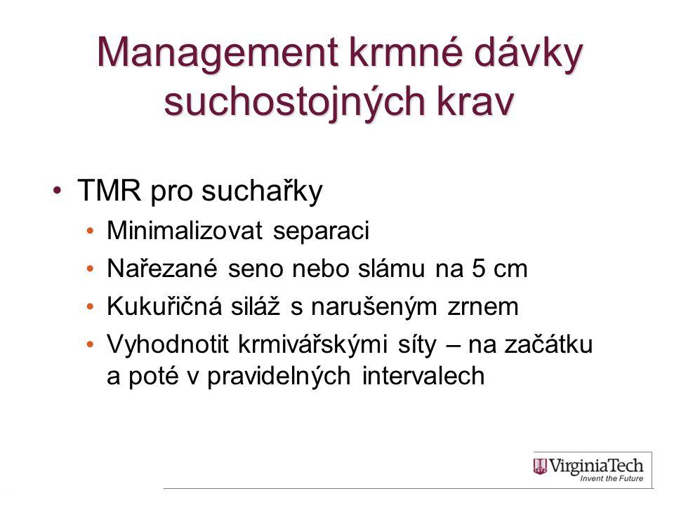 Management krmné dávky suchostojných krav •TMR pro suchařky • Minimalizovat separaci • Nařezané seno nebo slámu na 5 cm • Kukuřičná siláž s narušeným