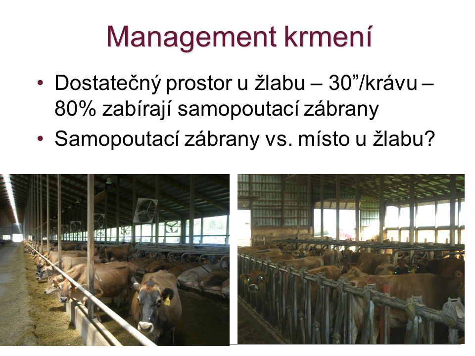 """Management krmení •Dostatečný prostor u žlabu – 30""""/krávu – 80% zabírají samopoutací zábrany •Samopoutací zábrany vs. místo u žlabu? 48"""