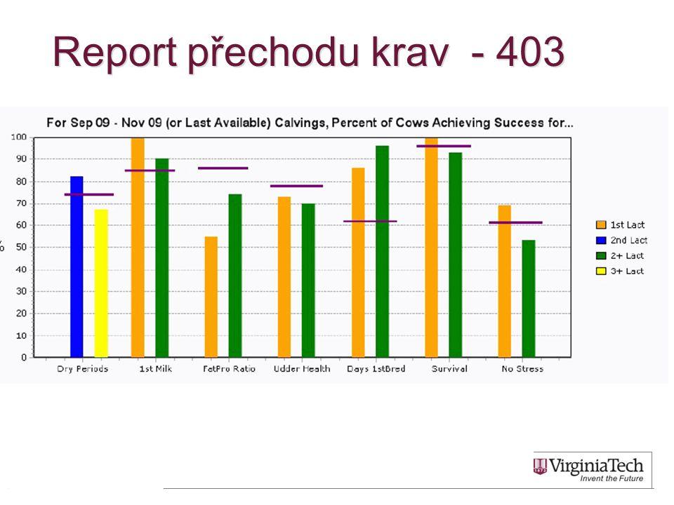 Report přechodu krav - 403 59
