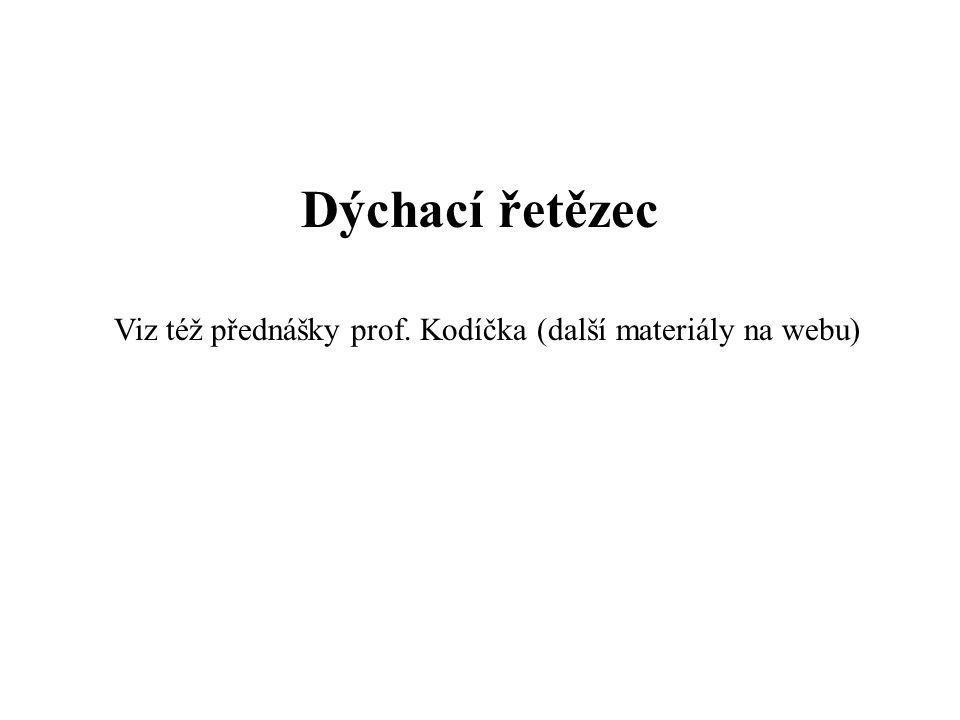 Fotosynthesa