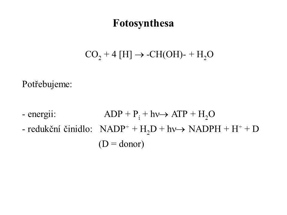 CO 2 + 4 [H]  -CH(OH)- + H 2 O Potřebujeme: - energii: ADP + P i + h  ATP + H 2 O - redukční činidlo: NADP + + H 2 D + h  NADPH + H + + D (D = do
