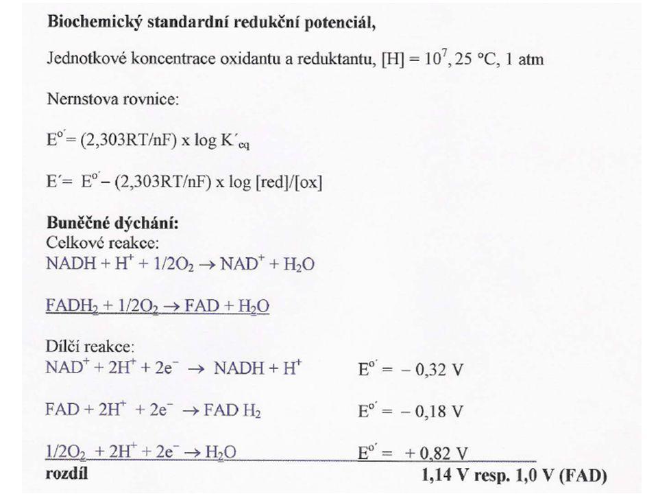 CO 2 + 4 [H]  -CH(OH)- + H 2 O Potřebujeme: - energii: ADP + P i + h  ATP + H 2 O - redukční činidlo: NADP + + H 2 D + h  NADPH + H + + D (D = donor) Fotosynthesa