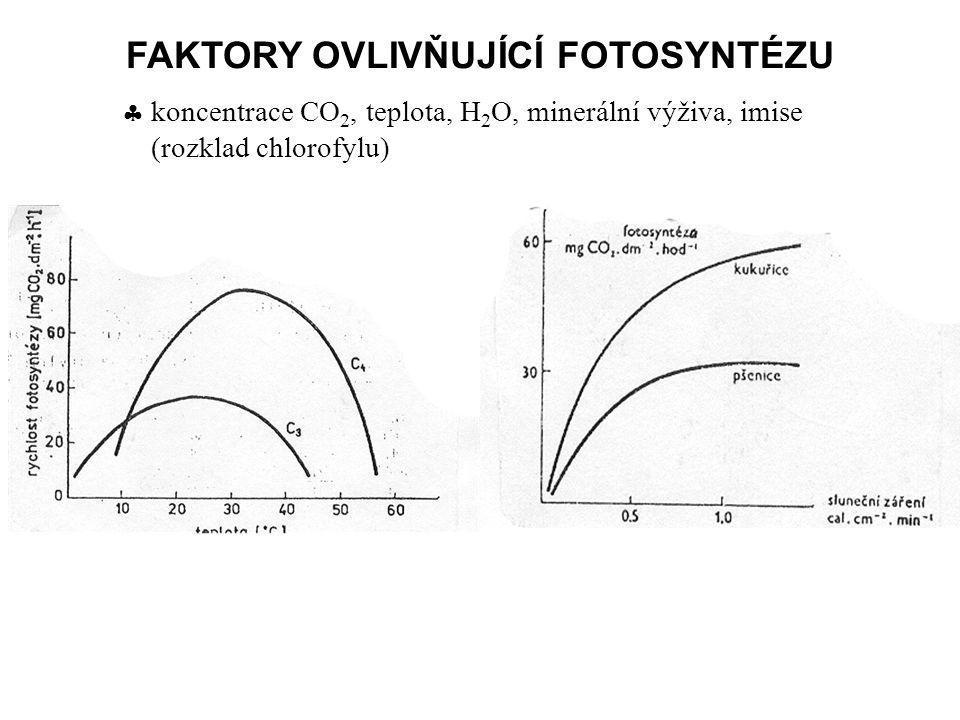 FAKTORY OVLIVŇUJÍCÍ FOTOSYNTÉZU  koncentrace CO 2, teplota, H 2 O, minerální výživa, imise (rozklad chlorofylu)