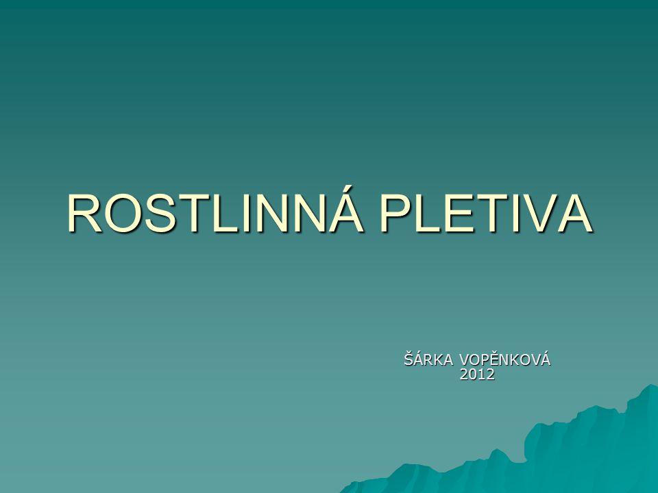 ROSTLINNÁ PLETIVA ŠÁRKA VOPĚNKOVÁ 2012