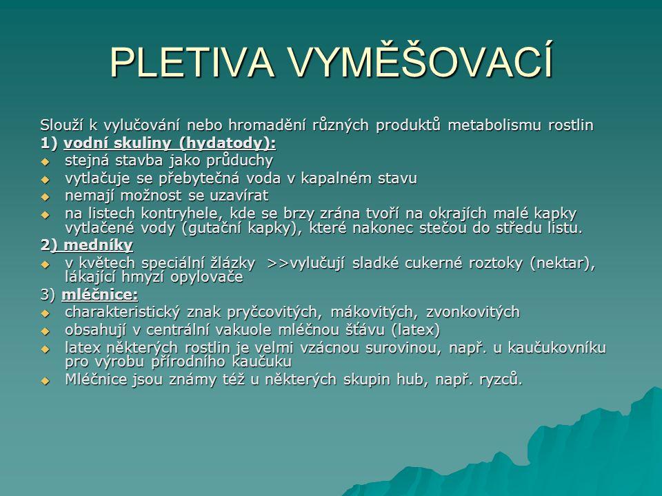 PLETIVA VYMĚŠOVACÍ Slouží k vylučování nebo hromadění různých produktů metabolismu rostlin 1) vodní skuliny (hydatody):  stejná stavba jako průduchy