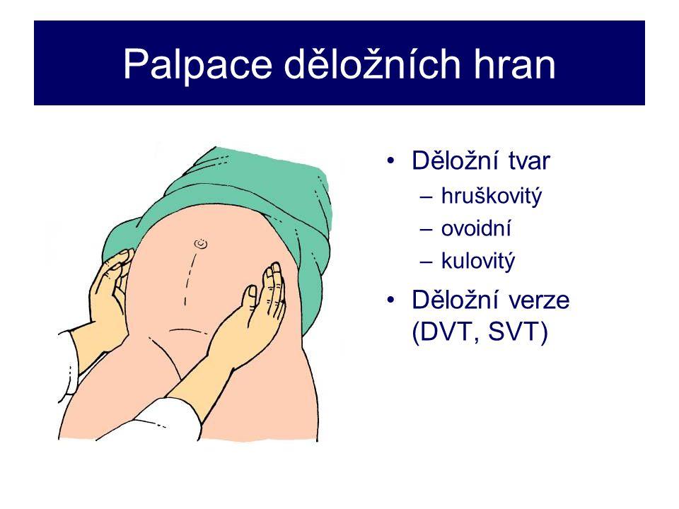 Palpace děložních hran •Děložní tvar –hruškovitý –ovoidní –kulovitý •Děložní verze (DVT, SVT)