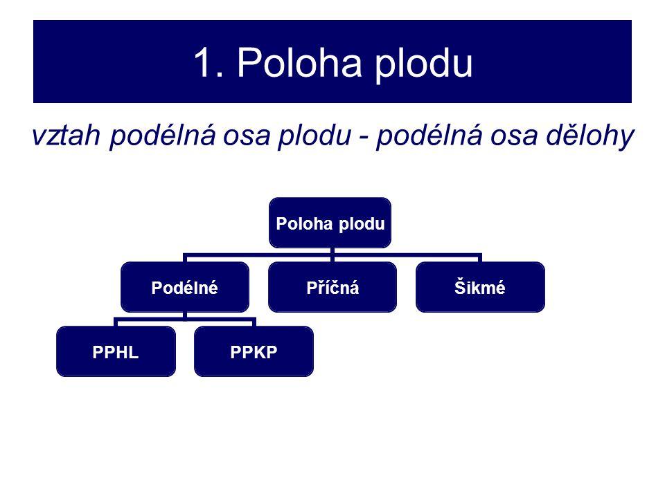 1. Poloha plodu Poloha plodu Podélné PPHLPPKP PříčnáŠikmé vztah podélná osa plodu - podélná osa dělohy