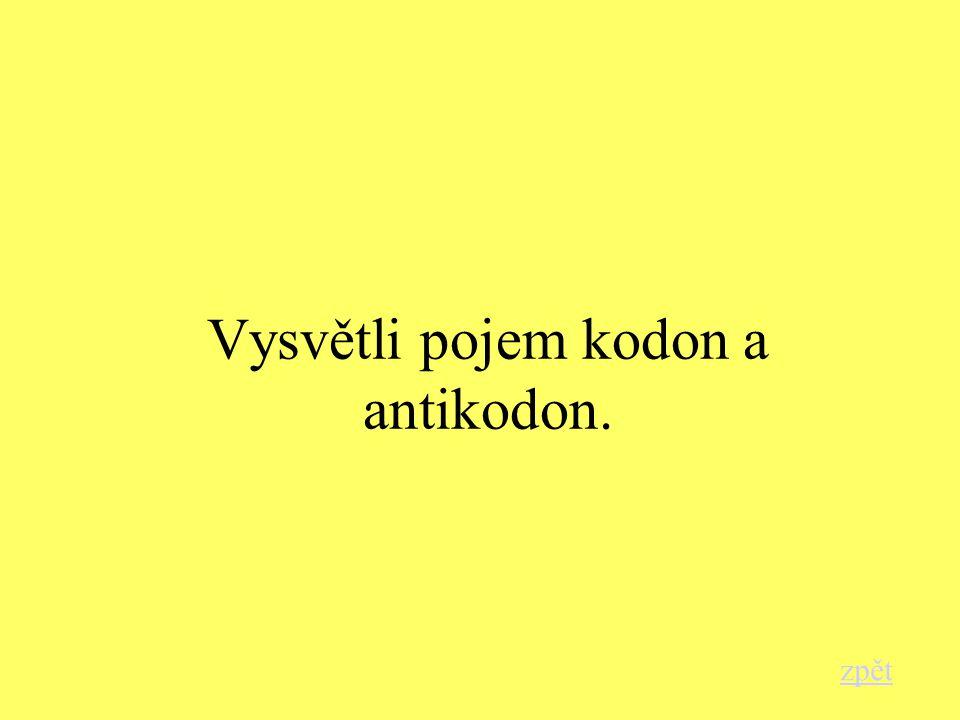 Vysvětli pojem kodon a antikodon. zpět