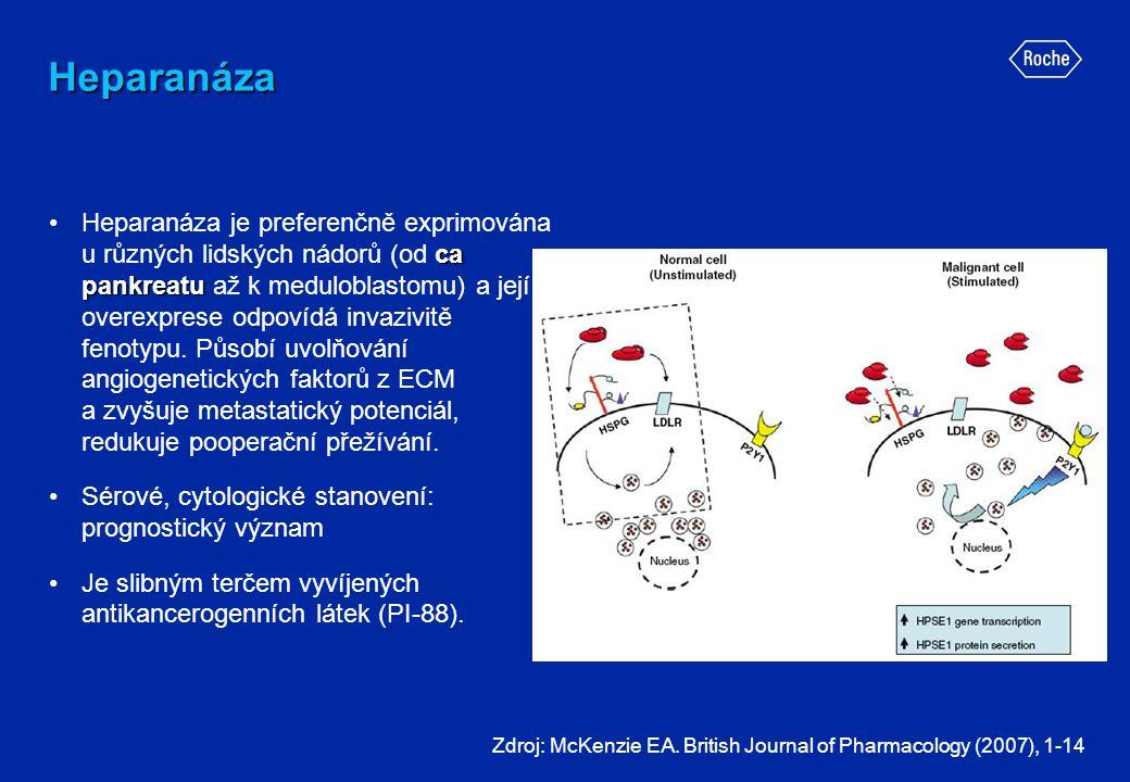 Heparanáza ca pankreatu •Heparanáza je preferenčně exprimována u různých lidských nádorů (od ca pankreatu až k meduloblastomu) a její overexprese odpo