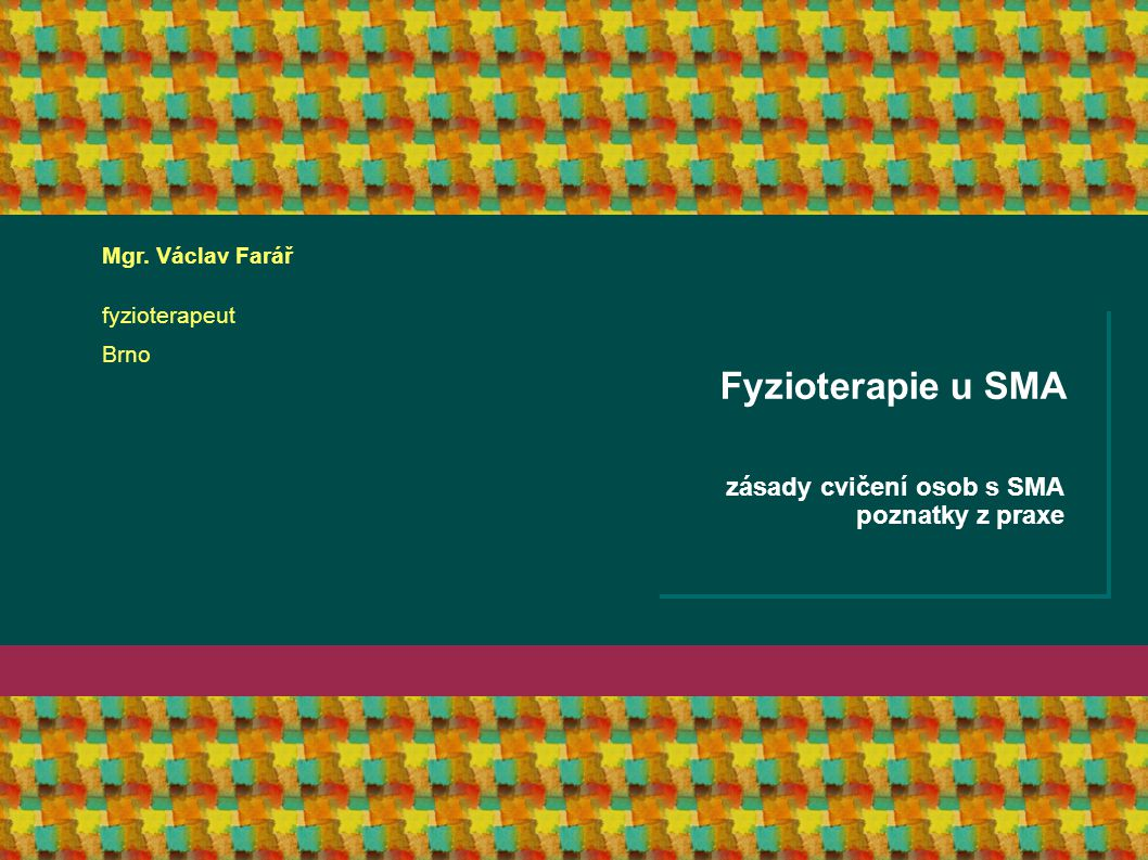 2005-12-31 Course Name More Description About the Course Fyzioterapie u SMA zásady cvičení osob s SMA poznatky z praxe Mgr. Václav Farář fyzioterapeut