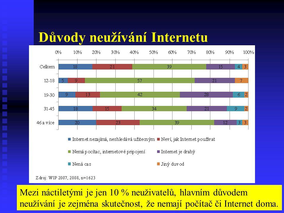 Důvody neužívání Internetu Mezi náctiletými je jen 10 % neuživatelů, hlavním důvodem neužívání je zejména skutečnost, že nemají počítač či Internet do