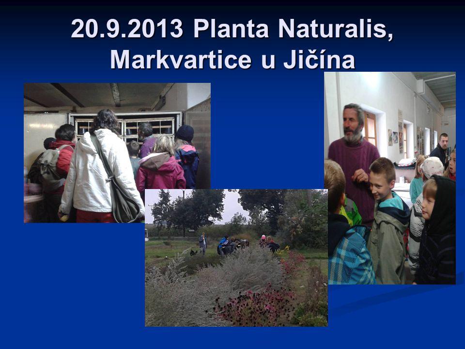 27.9.2013 Kaňk u Kutné Hory, proměny společenstva na podzim SKUPINA Č.