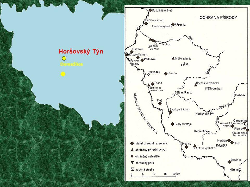 Nejvíce chráněných území se nachází v horském pásmu Českého lesa.