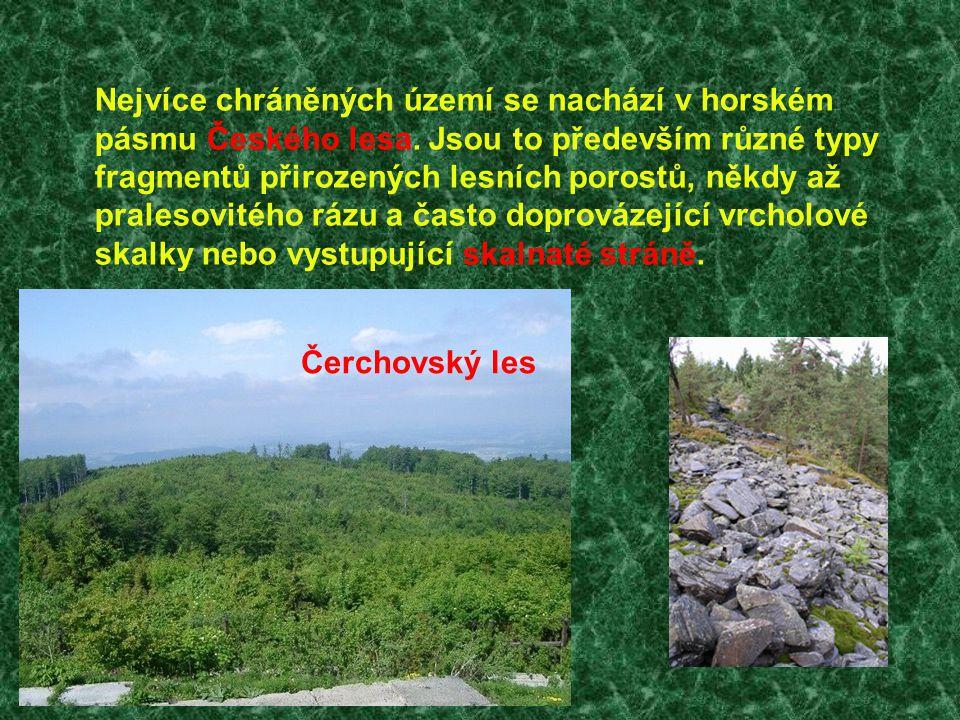 Nejvíce chráněných území se nachází v horském pásmu Českého lesa. Jsou to především různé typy fragmentů přirozených lesních porostů, někdy až praleso