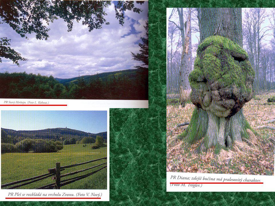Pásmo rulových skal, vystupující v hřebenových partiích haltravské části Českého lesa, vytváří v lesích atraktivní seskupení.