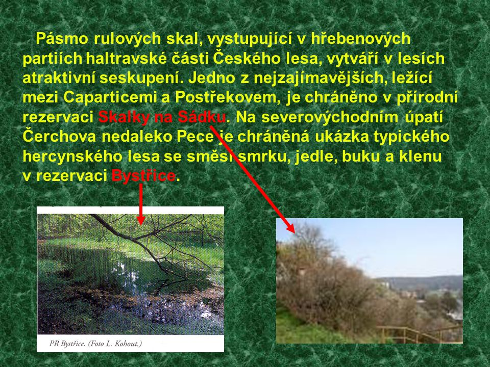 Pásmo rulových skal, vystupující v hřebenových partiích haltravské části Českého lesa, vytváří v lesích atraktivní seskupení. Jedno z nejzajímavějších
