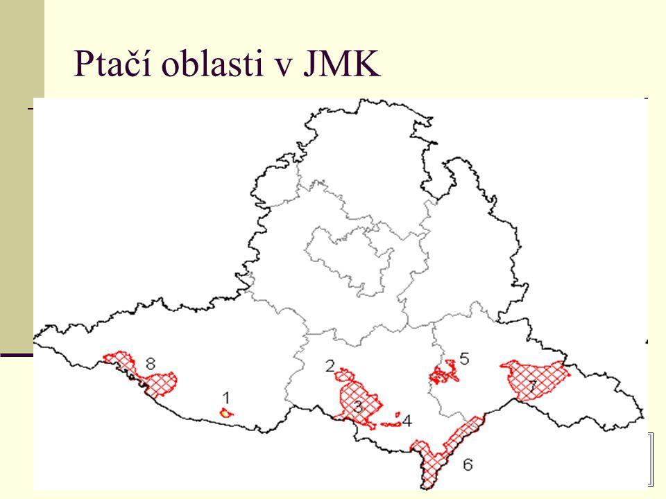 Ptačí oblasti v JMK