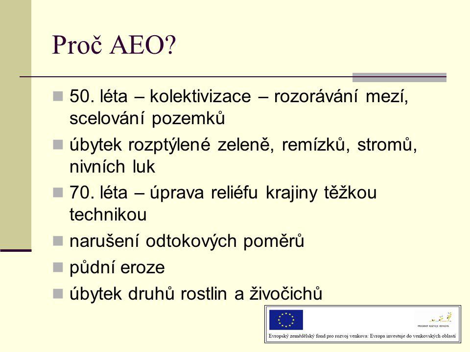 Proč AEO?  50. léta – kolektivizace – rozorávání mezí, scelování pozemků  úbytek rozptýlené zeleně, remízků, stromů, nivních luk  70. léta – úprava